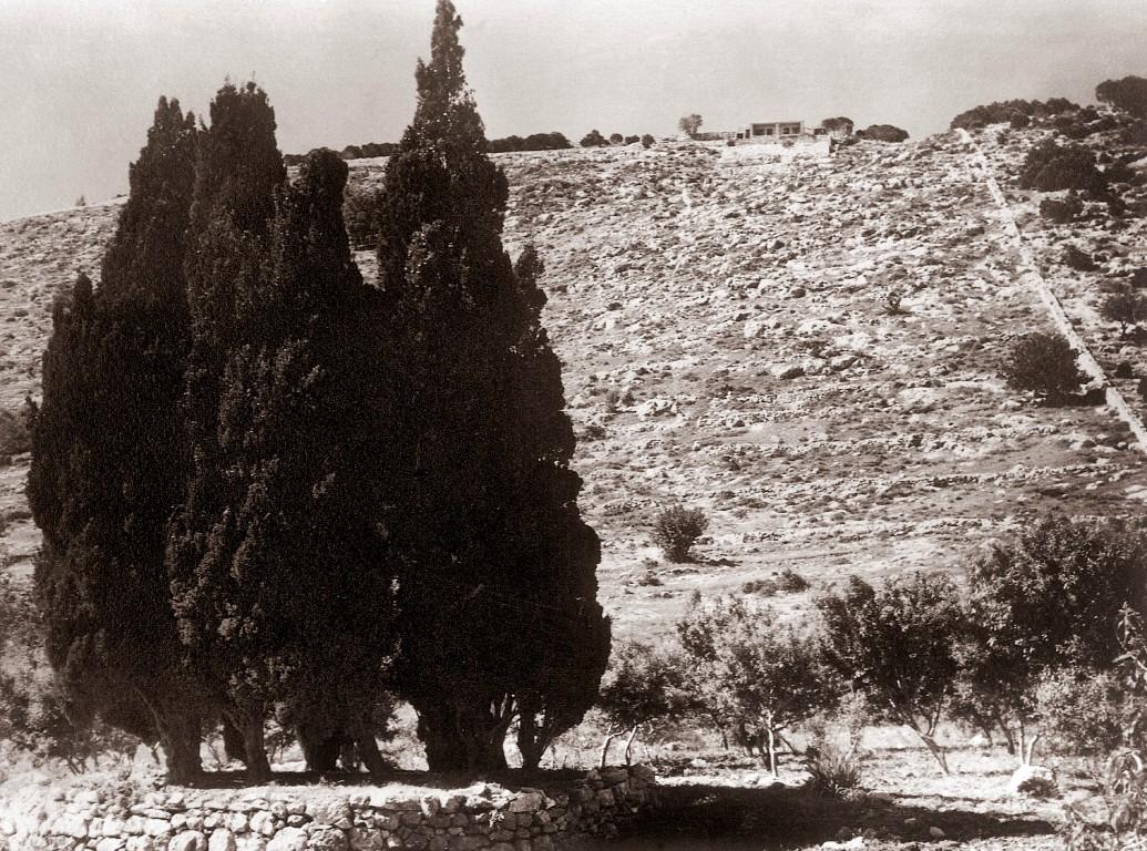 Mt Carmel in the Holy Land where Baha'u'llah stood