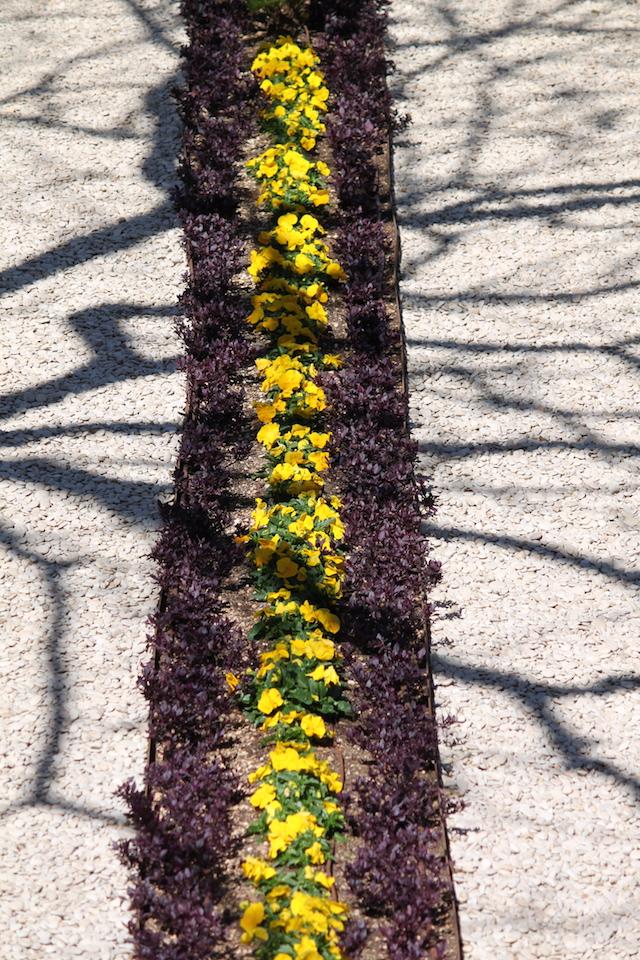 Five Positive Teachings - gardens Bahji ridvan 2015